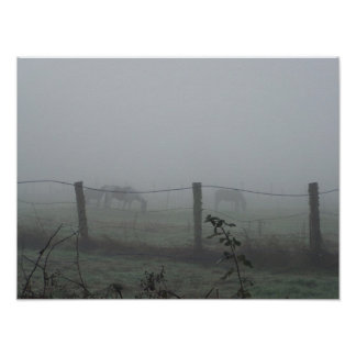 Horses In Morning Fog Poster
