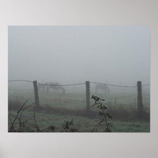 Horses In Morning Fog Poster