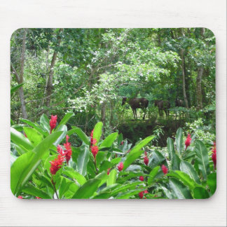 Horses in Paradise Mouse Pad