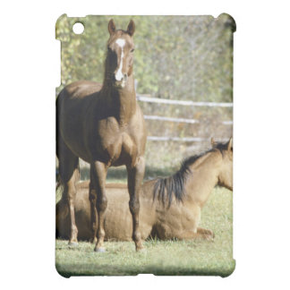Horses in pasture iPad mini cases
