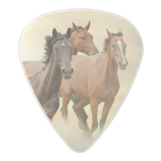 Horses In Sunset Acetal Guitar Pick