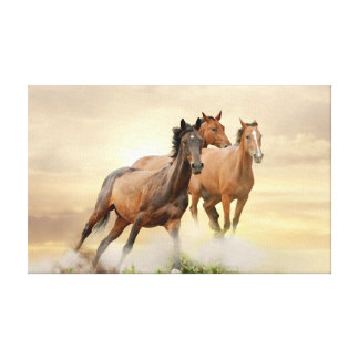Horses In Sunset Canvas Print