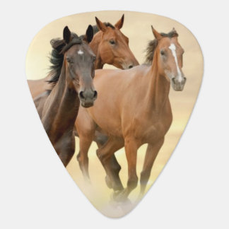 Horses In Sunset Guitar Pick