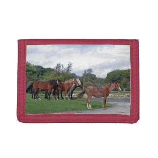 Horses in the New Forest Tri-fold Wallet