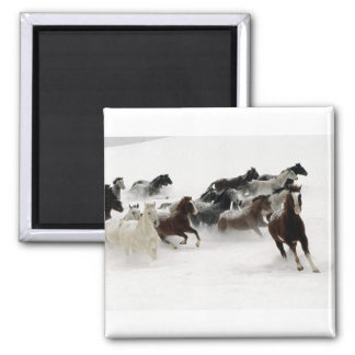 Horses in the snow square magnet