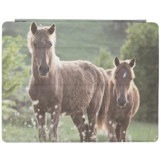 Horses iPad Cover