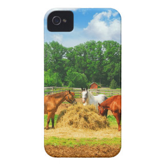 Horses iPhone 4/4S Case-Mate Barely There iPhone 4 Case-Mate Case