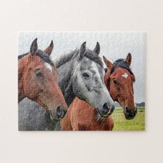 Horses Jigsaw Puzzle