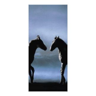 Horses making friends by moonlight custom rack cards