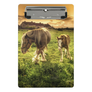 Horses Mother and Foal Mini Clipboard