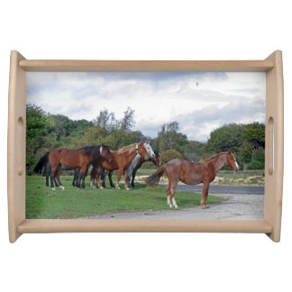 horses New Forest serving tray