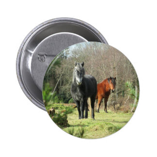 Horses of The Forest 1 6 Cm Round Badge