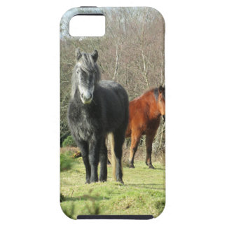 Horses of The Forest 1 iPhone 5 Cover