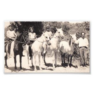 horses old corfu photo print