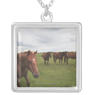 Horses On A Field Silver Plated Necklace