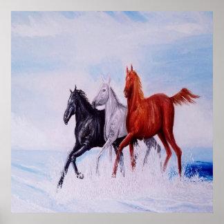 horses on beach poster