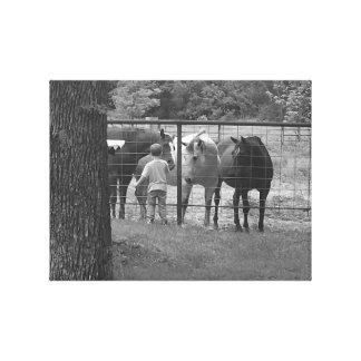 Horses on Canvas