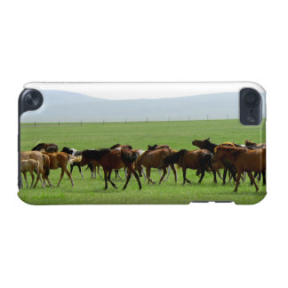 Horses on Pasture - Landscape Photograph iPod Touch (5th Generation) Case