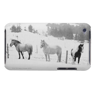Horses on ranch barely there iPod covers