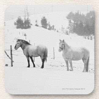 Horses on ranch coaster