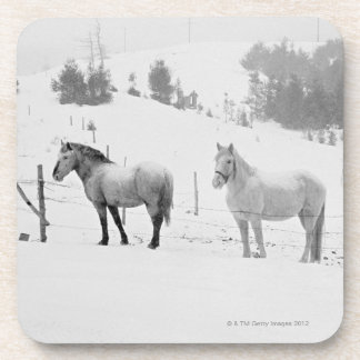 Horses on ranch drink coaster