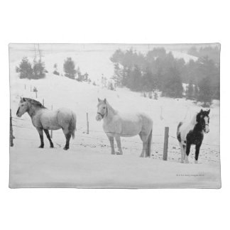 Horses on ranch placemat
