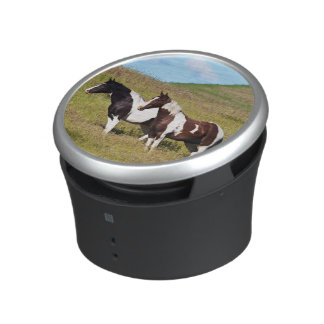 Horses on the hillside speaker