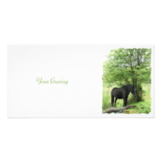 HORSES PHOTO CARD TEMPLATE