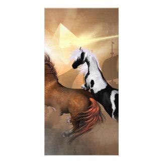 Horses Photo Greeting Card