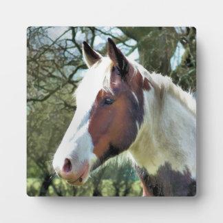HORSES PLAQUE