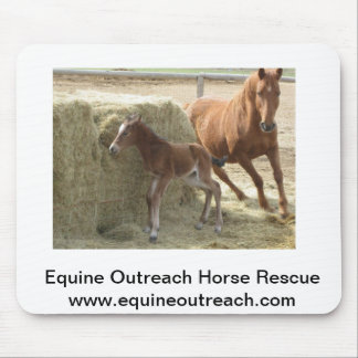 Horses playing tag mouse pad