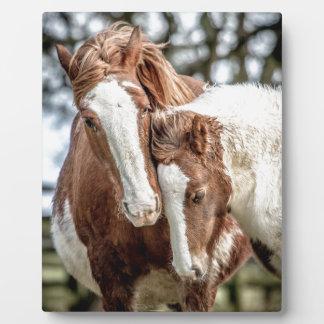 Horses/Ponies Plaque