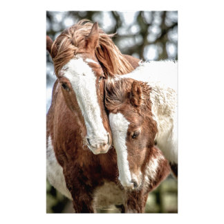 Horses/Ponies Stationery