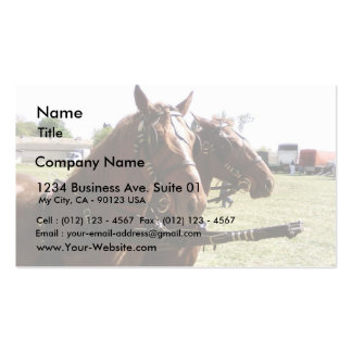 Horses Ready To Go Business Card Template