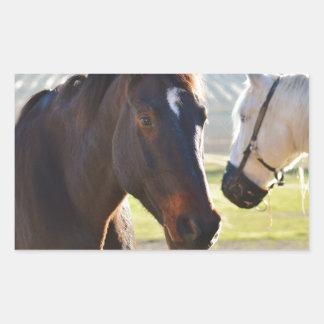 Horses Rectangular Sticker