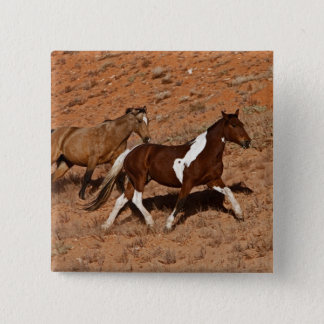 Horses roaming the Big Horn MT of Shell Wyoming. 15 Cm Square Badge