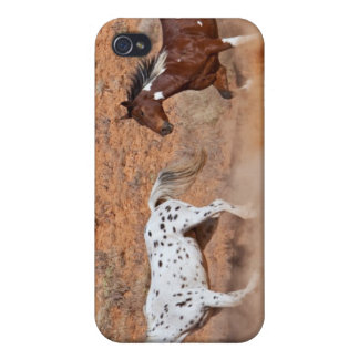 Horses roaming the Big Horn MT of Shell Wyoming. 2 iPhone 4 Case