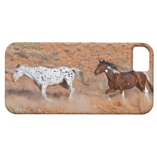 Horses roaming the Big Horn MT of Shell Wyoming. 2 iPhone 5 Cover