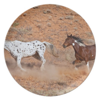 Horses roaming the Big Horn MT of Shell Wyoming. 2 Plate
