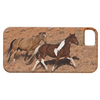 Horses roaming the Big Horn MT of Shell Wyoming. iPhone 5 Case