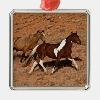 Horses roaming the Big Horn MT of Shell Wyoming. Silver-Colored Square Decoration
