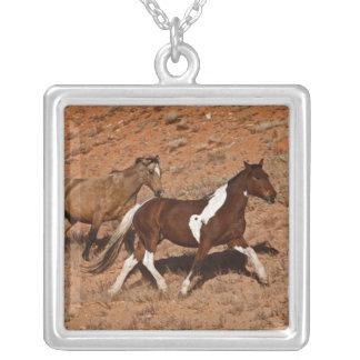 Horses roaming the Big Horn MT of Shell Wyoming. Silver Plated Necklace