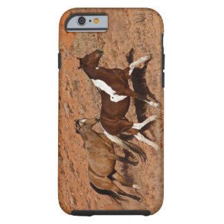 Horses roaming the Big Horn MT of Shell Wyoming. Tough iPhone 6 Case