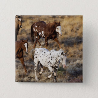 Horses roaming the scenic hills of the Big Horn 15 Cm Square Badge