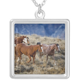 Horses roaming the scenic hills of the Big Horn 2 Silver Plated Necklace