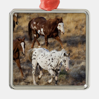Horses roaming the scenic hills of the Big Horn Christmas Ornament