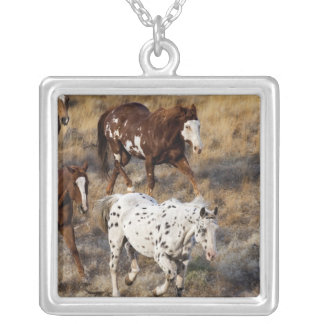 Horses roaming the scenic hills of the Big Horn Silver Plated Necklace