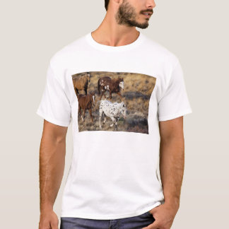 Horses roaming the scenic hills of the Big Horn T-Shirt