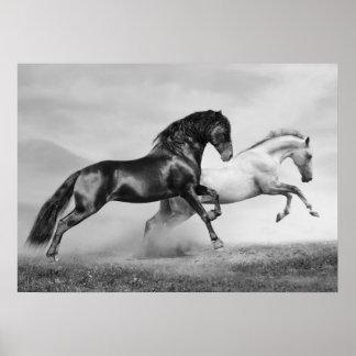 Horses Run Poster
