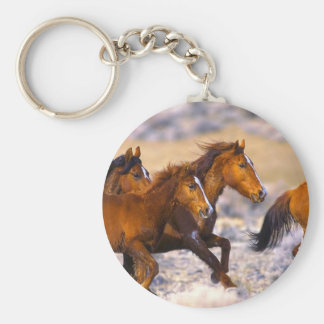 Horses running basic round button key ring